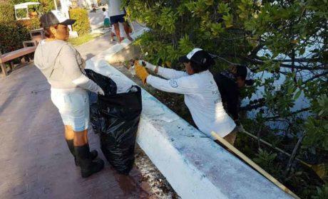 Se mantiene limpia la Salina Grande: Zofemat